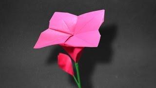 Origami: Spiral Flower ( Wellington W )